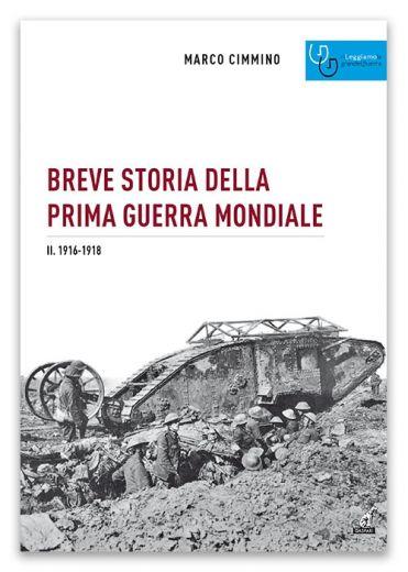 BREVE STORIA DELLA PRIMA GUERRA MONDIALE 2. 1916-1918 - Marco Cimmino